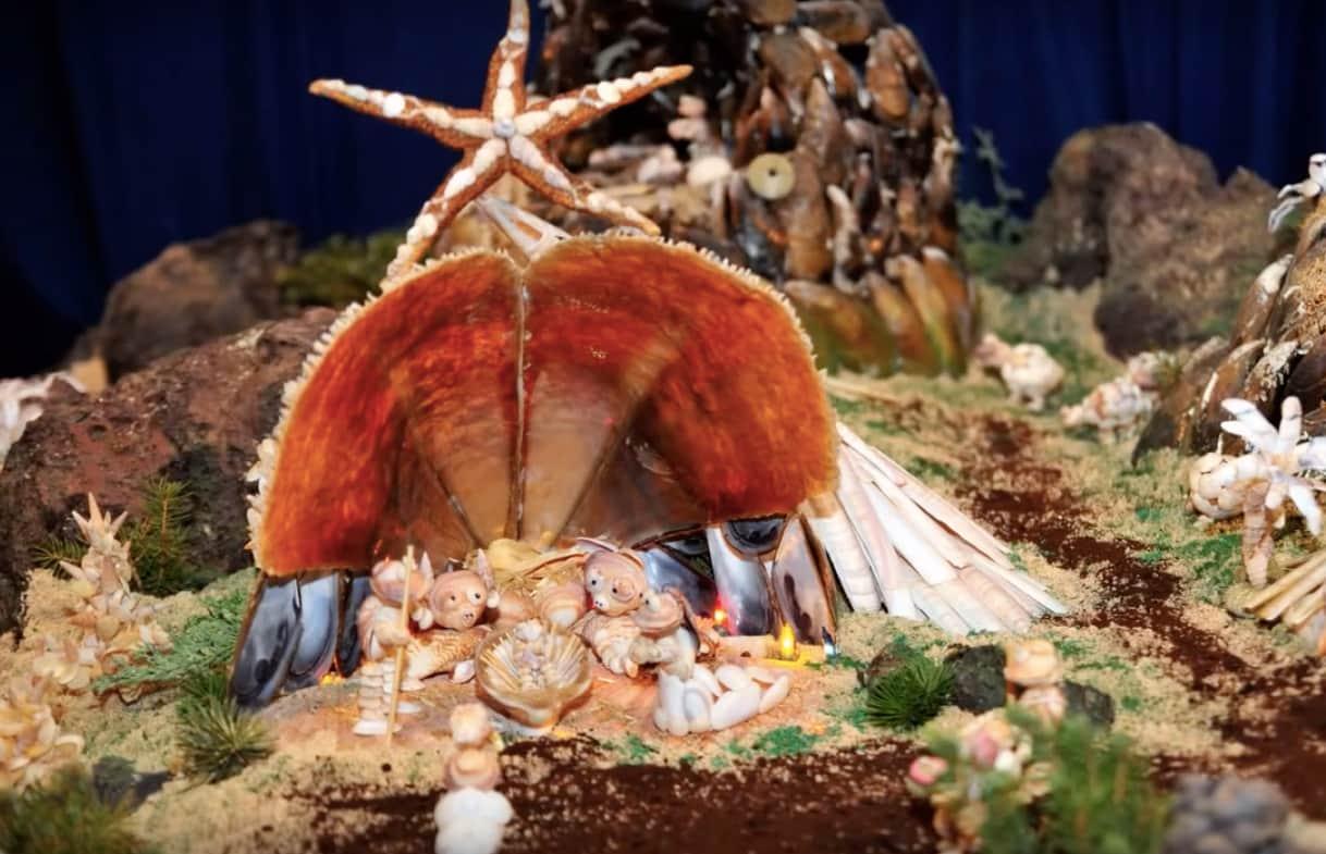 belén de conchas compostilla 2