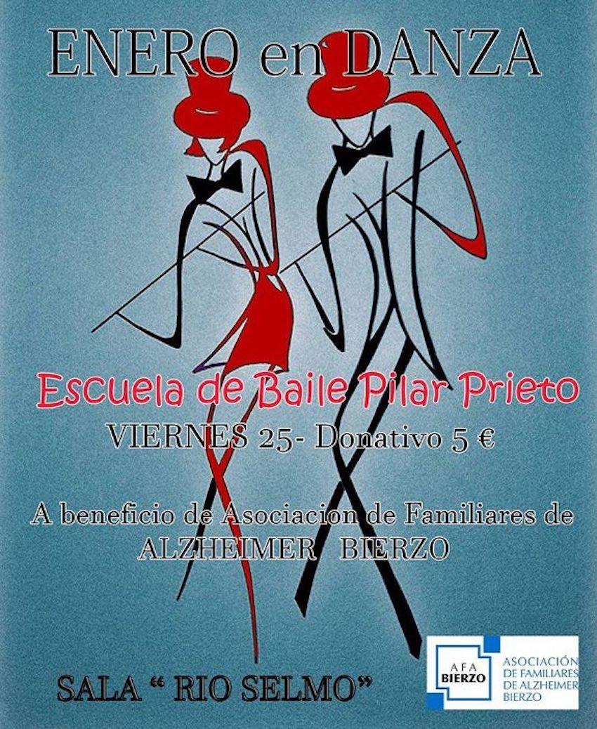 Gala solidaria Escuela Pilar Prieto