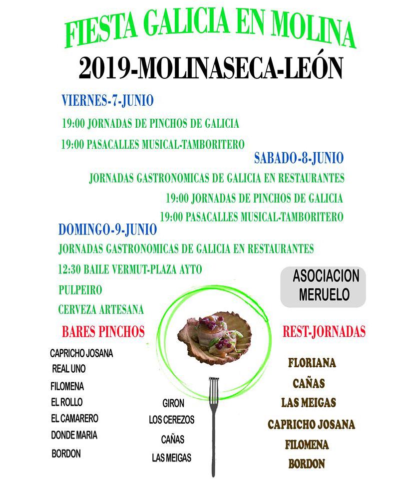 cartel fiesta gallega molinaseca el bierzo